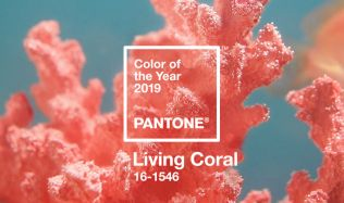 Barvou roku 2019 je výrazný odstín korálové!