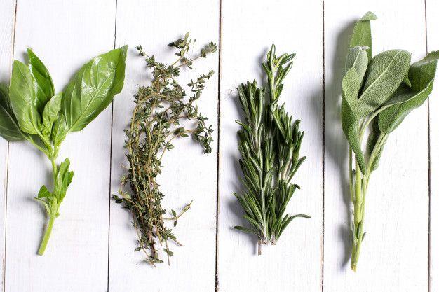 Bylinky oživí nejen vaše kulinářství, ale i zahradu