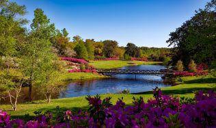 Inspirace: Trendy a tipy pro krásnou zahradu i v létě