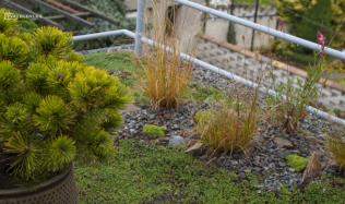 Jak si udělat zahrádku i na balkónech a terasách? Podívejte se na Přemkovy rychlé rady pro zahrady.