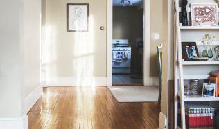 Majitelé bytů nesmí dát nájemníkům výpověď, pokud kvůli epidemii nemůžou platit nájem