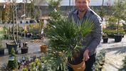 Přemkovy rychlé rady pro zahrady
