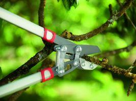 Aby vám šla práce lehce od ruky, vyzkoušejte pro péči o angrešty a rybízy kovadlinkové zahradní nůžky RS 4000 od firmy WOLF-Garten