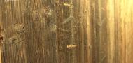 Staré dřevo se stalo designovým a trendovým materiálem
