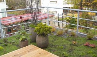 Stavba není sen 2 - 12. díl - Zelená terasa u bytu