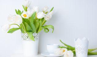 Inspirujte se ve světě jarních dekorací!
