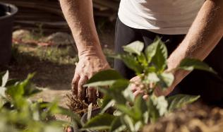 Poslední šance připravit zahradu na zimu, nezapomeňte na hnojiva