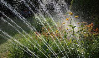 Také s vodou určenou k zalévání se dá efektivně hospodařit