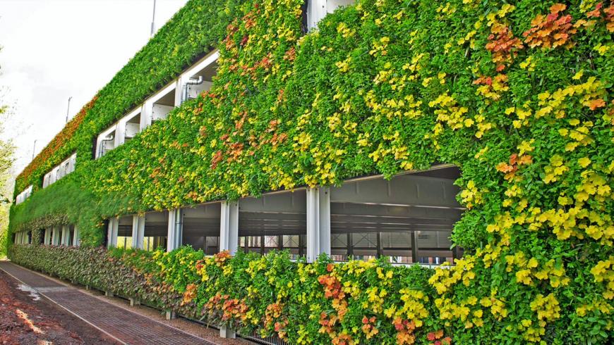 Téma: Vertikální zahrady a zelená města