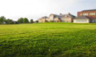 Tipy, jak na vyživený a zelený trávník vsuchém létě