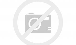 Trendem v bydlení se stávají zelené střechy