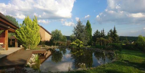 Trendy a tipy pro krásnou zahradu