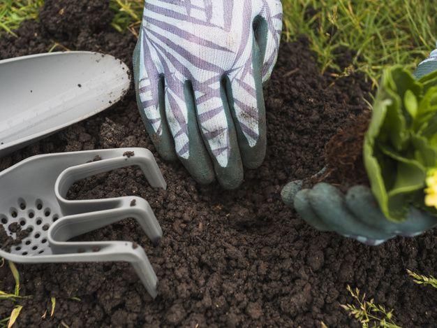 Vybíráte kompostér na zahradu, máme pro vás několik rad