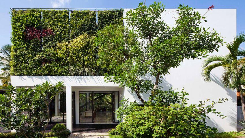 Význam i obliba zelených střech rostou