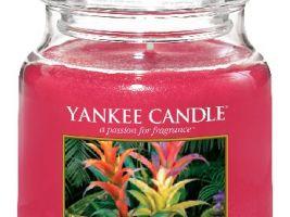 yankee-candle-vonna-svicka-tropical-jungle-classic-stredni-A-5acb7dbb52f38