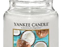 yankee-candle-vonna-svicka-warm-desert-wind-classic-stredni-A-5acb7e5c46368