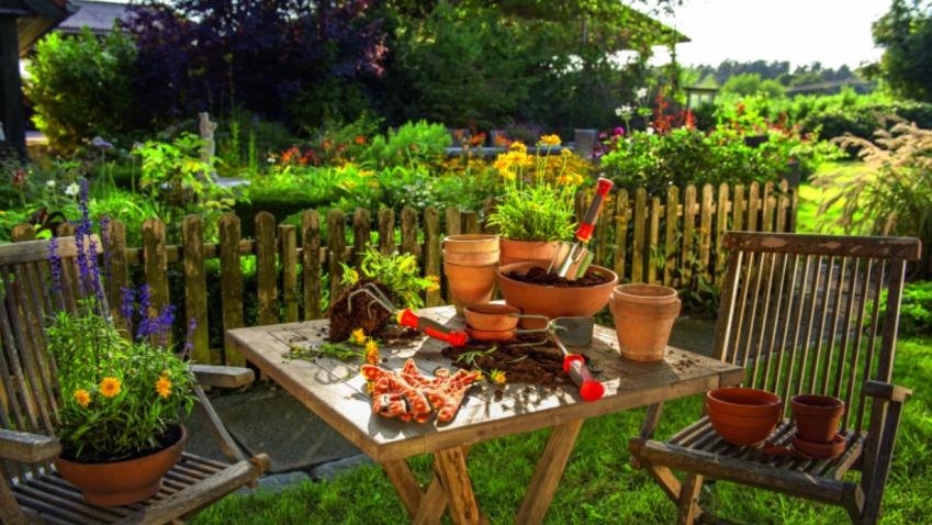 Zahradničení ve městě je snazší než si myslíte