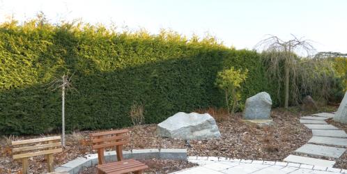 Přemkovy rychlé rady pro zahrady - 6. díl - Živé ploty ano/ne?